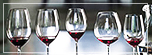Riedel Wine Glass Comparative Workshop - familycruisediscounts.com