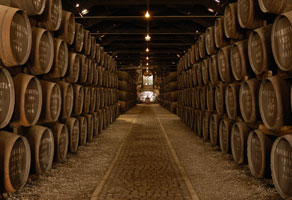 Spirits, Cellars & More